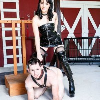 Black-haired gf Sarah Dice has her slave husband worship her rump and snatch