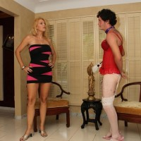 Alluring blond wife Charlee Haunt coerces her crossdressing sissy husband to his knees