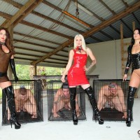 Domme Brianna and a few other wicked ladies abuse masculine subs before caging them