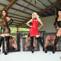 Domina Brianna and a two other non nude mistresses put sissy boys into cages