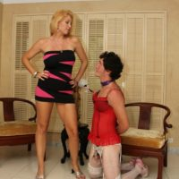 Spindly fair-haired chick Charlee Pursue trainig her crossdressing sissy maid